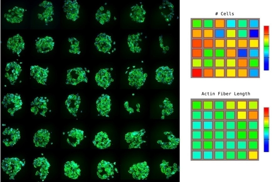 Spotted Array imaging